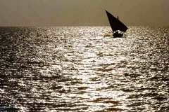 08_dhow_in_Persian_Gulf_Nov1971