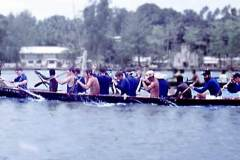 47_war_canoe_race_Gizo_Sept1970