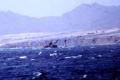 48_wreck_at_entrance_to_Cape_Verde_harbour_June1970